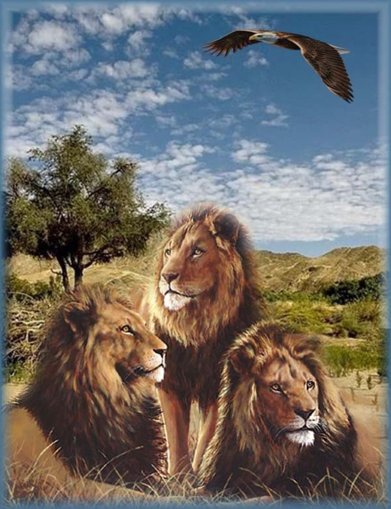 Afrika-_Ceriel2_014.jpg