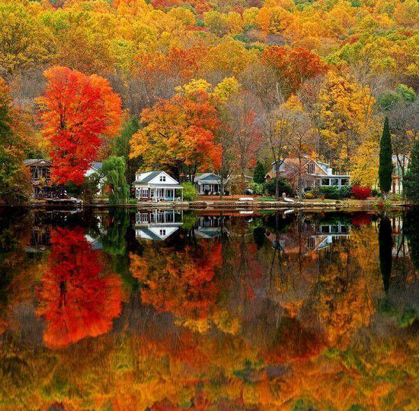 Reflets dans l'eau ... dans Belles images c2ce856e
