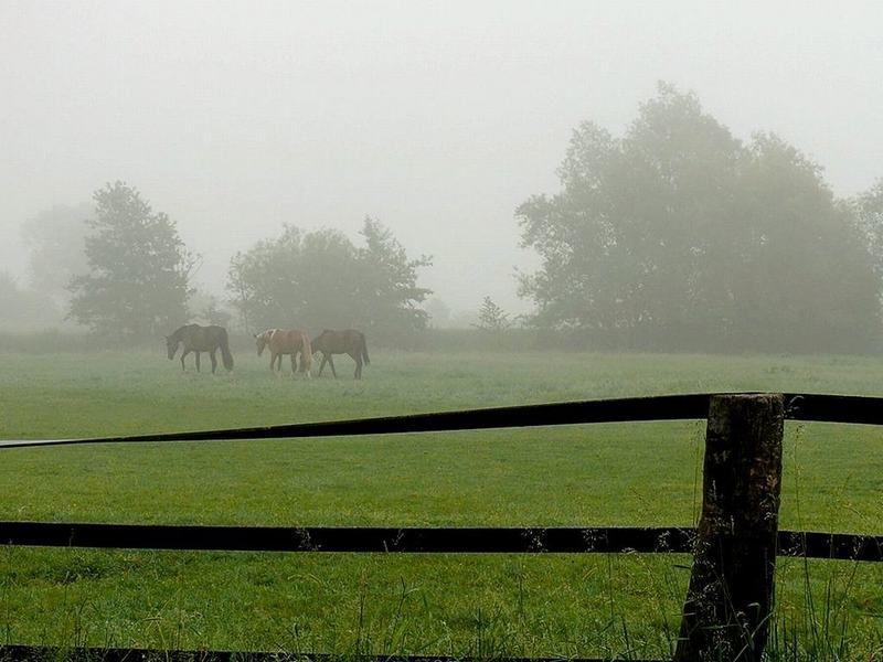Photographies de paysages au petit matin